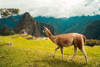 viajes a latino america